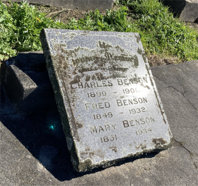 Picture of Ormond cemetery, block ORM1, plot 51.
