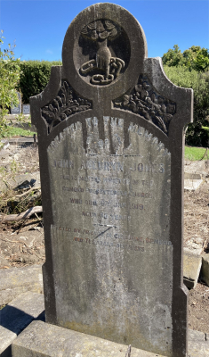 Picture of Ormond cemetery, block ORM1, plot 81.