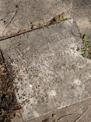 Picture of Ormond cemetery, block ORM2, plot 13.