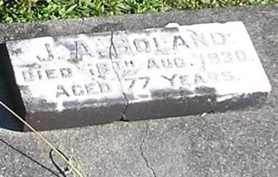 Picture of Ormond cemetery, block ORM2, plot 42.