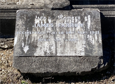 Picture of Ormond cemetery, block ORM2, plot 59.
