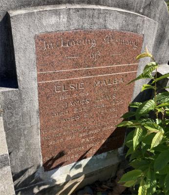 Picture of Ormond cemetery, block ORM2, plot 75.