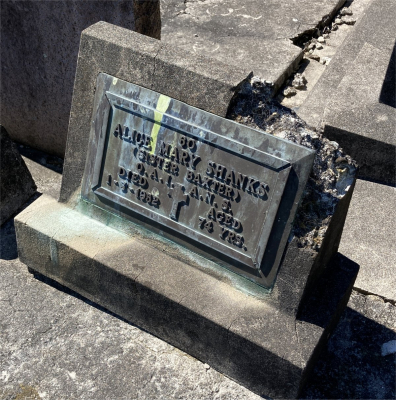 Picture of Ormond cemetery, block ORM3, plot 51.