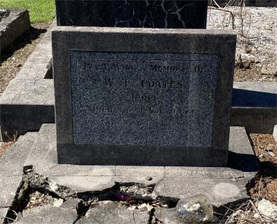 Picture of Ormond cemetery, block ORM3, plot 58.
