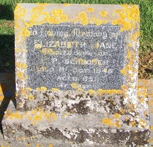 Picture of Patutahi cemetery, block PATE, plot 84.