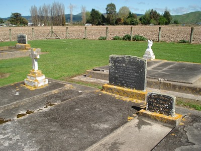 Picture of Patutahi cemetery, block PATG, plot 21.