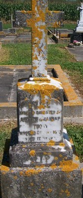 Picture of Patutahi cemetery, block PATG, plot 55.
