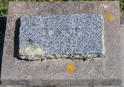 Picture of Patutahi cemetery, block PATH, plot 38.