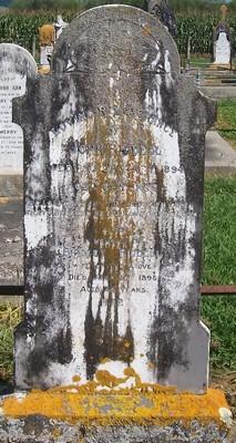 Picture of Patutahi cemetery, block PATH, plot 4.