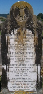 Picture of Patutahi cemetery, block PATI, plot 45.