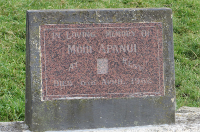 Picture of Rakauroa cemetery, block RAK4, plot 7.