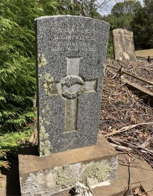 Picture of Ruatoria cemetery, block RUAA, plot 12A.