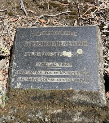 Picture of Ruatoria cemetery, block RUAA, plot 32.