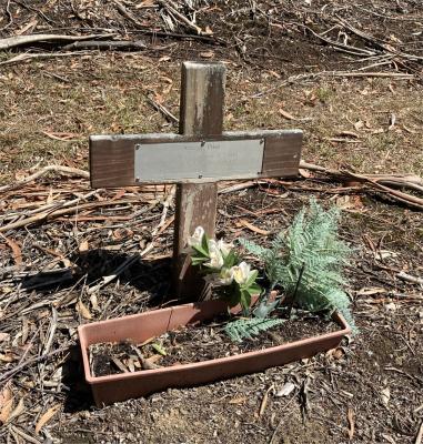 Picture of Ruatoria cemetery, block RUAA, plot 5.