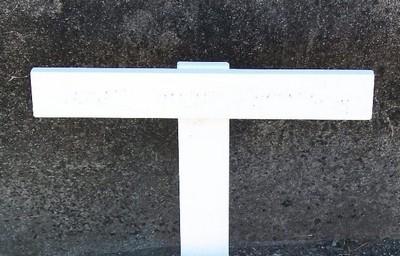 Picture of Taruheru cemetery, block 11, plot 101A.