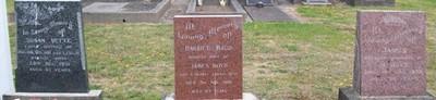 Picture of Taruheru cemetery, block 11, plot 31.