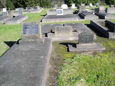 Picture of Taruheru cemetery, block 17, plot 7.