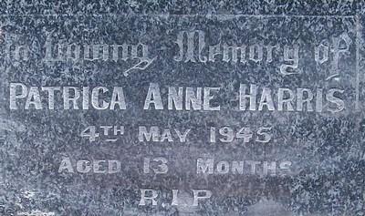 Picture of Taruheru cemetery, block 19, plot 58.