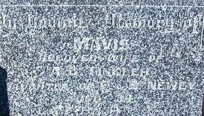Picture of Taruheru cemetery, block 21, plot 100.