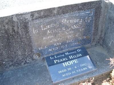 Picture of Taruheru cemetery, block 21, plot 205.