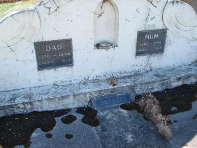 Picture of Taruheru cemetery, block 21, plot 223.