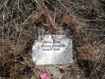 Picture of Taruheru cemetery, block 21, plot 278.