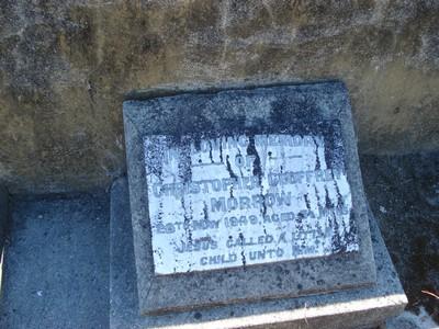 Picture of Taruheru cemetery, block 21, plot 29.