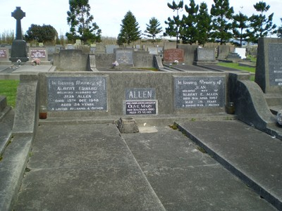 Picture of Taruheru cemetery, block 21, plot 313.