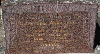 Picture of Taruheru cemetery, block 21, plot 376.