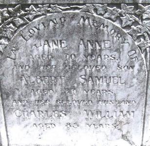 Picture of Taruheru cemetery, block 22, plot 116.