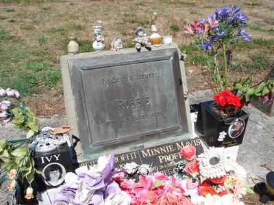 Picture of Taruheru cemetery, block 22, plot 122.