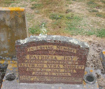 Picture of Taruheru cemetery, block 22, plot 313.