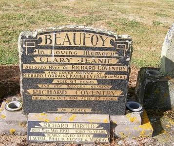 Picture of Taruheru cemetery, block 22, plot 338.