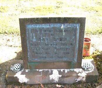 Picture of Taruheru cemetery, block 22, plot 344.