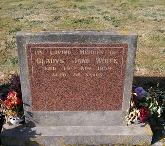Picture of Taruheru cemetery, block 22, plot 390.