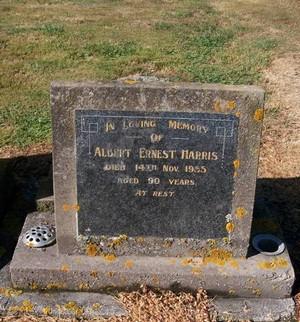 Picture of Taruheru cemetery, block 22, plot 444.