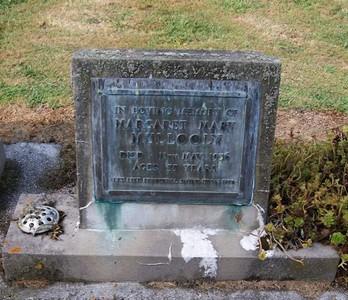 Picture of Taruheru cemetery, block 22, plot 515.