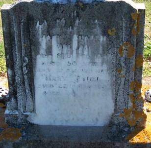 Picture of Taruheru cemetery, block 25, plot 105.