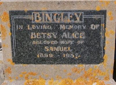 Picture of Taruheru cemetery, block 25, plot 157.