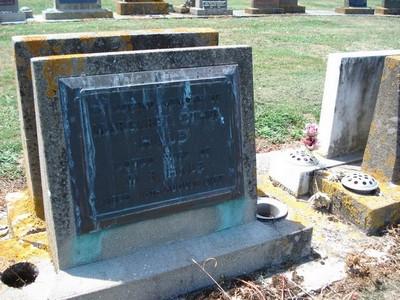 Picture of Taruheru cemetery, block 25, plot 179.