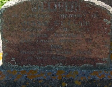 Picture of Taruheru cemetery, block 25, plot 249.