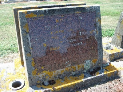 Picture of Taruheru cemetery, block 25, plot 258.