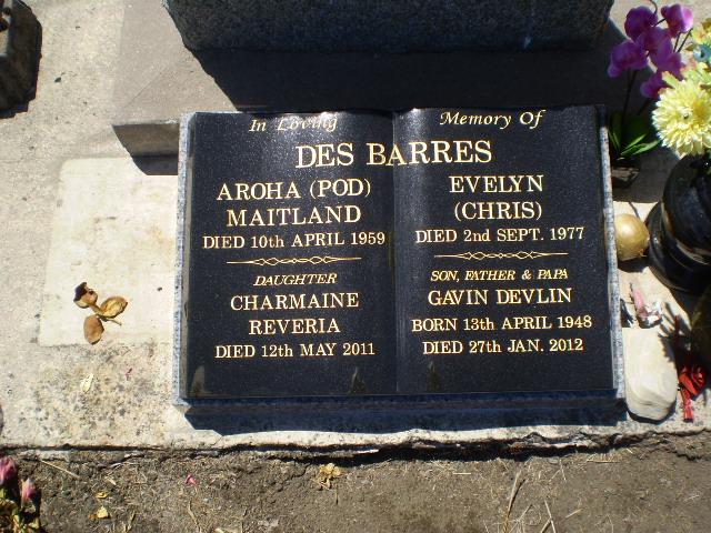 Picture of Taruheru cemetery, block 25, plot 394.