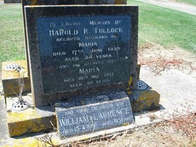 Picture of Taruheru cemetery, block 25, plot 396.