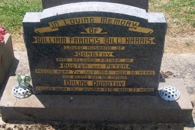 Picture of Taruheru cemetery, block 26, plot 101.