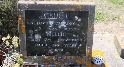 Picture of Taruheru cemetery, block 26, plot 118.