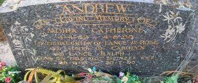 Picture of Taruheru cemetery, block 26, plot 264.