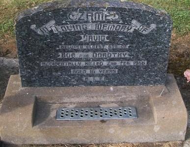 Picture of Taruheru cemetery, block 26, plot 331.