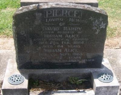 Picture of Taruheru cemetery, block 26, plot 38.
