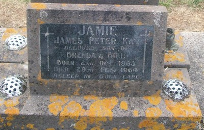 Picture of Taruheru cemetery, block 26, plot 48.